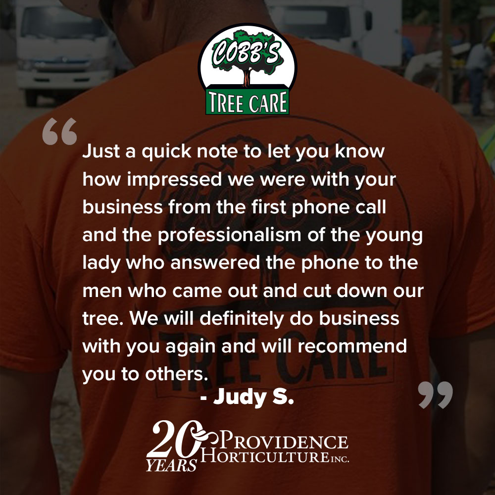 "This handwritten note was sent in with payment: ""Just a quick note to let you know how impressed we were with your business from the first phone call and the professionalism of the young lady who answered the phone to the men who came out and cut down our tree. We will definitely do business with you again and will recommend you to others.""  Judy S."