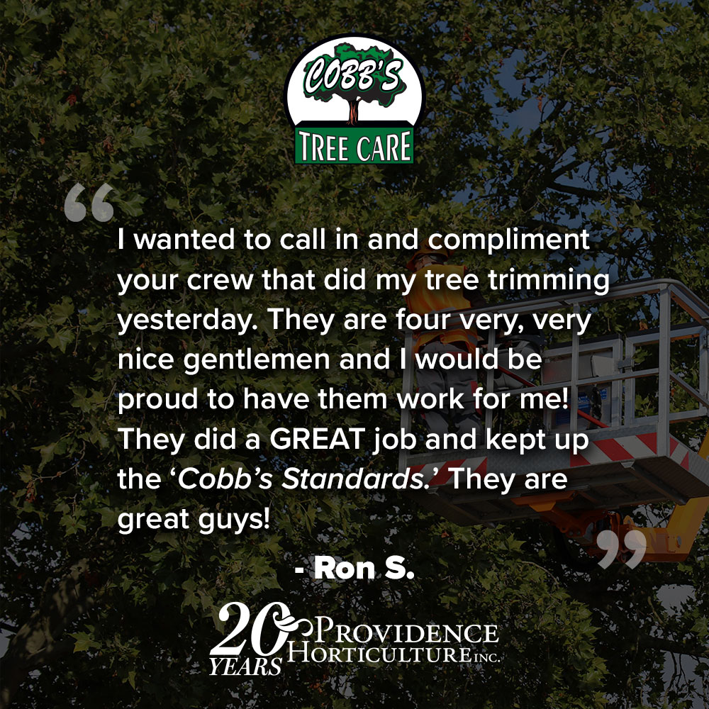 """""""I wanted to call in and compliment your crew that did my tree trimming yesterday. They are four very, very nice gentlemen and I would be proud to have them work for me! They did a GREAT job and kept up the """"Cobb's standards""""….they are great guys!"""" Ron S."""