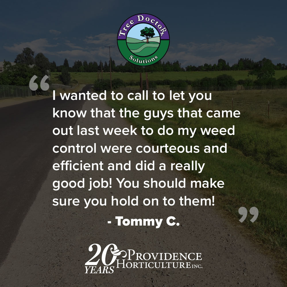 """""""I wanted to call to let you know that the guys that came out last week to do my weed control were courteous and efficient and did a really good job! You should make sure you hold on to them!""""   Tommy C."""