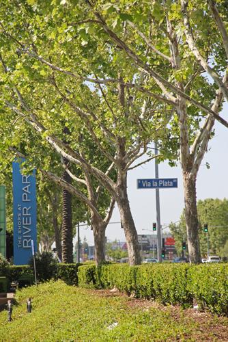 River Park 2