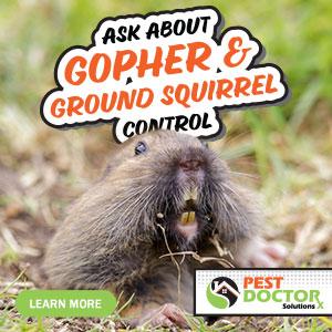 Gopher & Squirrel Control