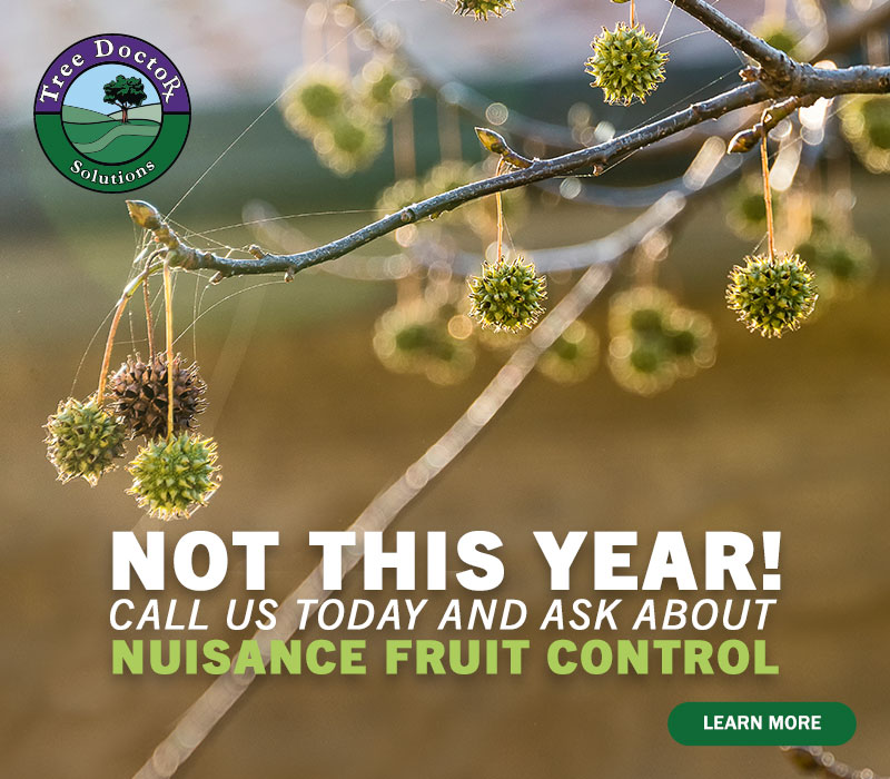 Not this year! Nuisance Fruit Control.