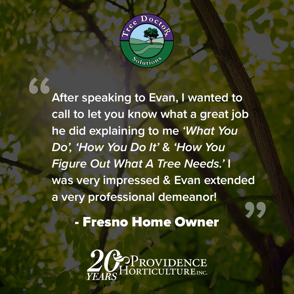 """After speaking to Evan, I wanted to call to let you know what a great job he did explaining to me ""what you do"", ""how you do it"" & ""how you figure out what a tree needs"". I was very impressed & Evan extended a very professional demeanor!"""