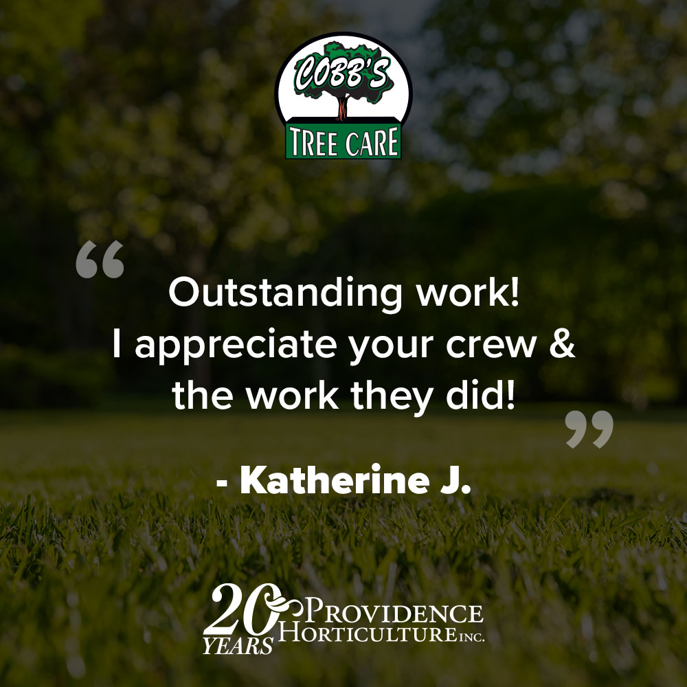 """""""Outstanding work! I appreciate your crew & the work they did!"""" Katherine J."""